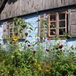 Wiejskie ogródki