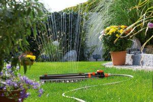 Nawadnianie roślin - systemy nawadniające w ogrodzie