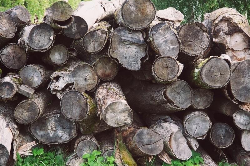 ekologiczne palenie w kominku - skład drewna , wyrzutnia powietrza