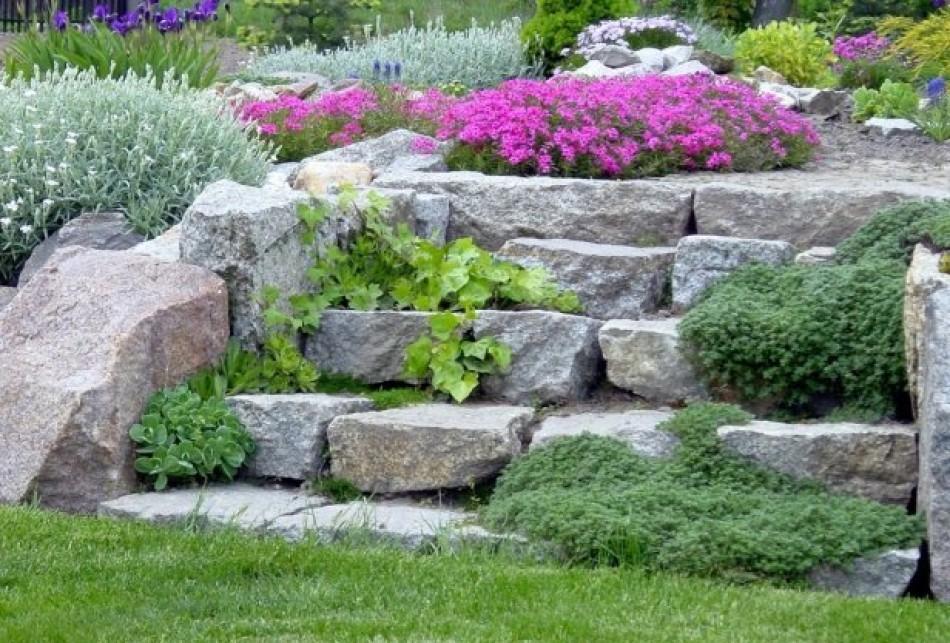 schody w ogrodzie z kamienia przypominają skalniak i idealnie wtapiają się w krajobrazu ogdrodu