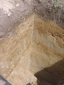 Jakość gleby